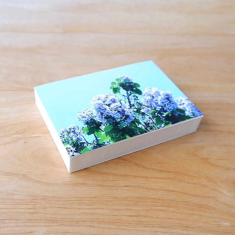 ShacollaBox(シャコラボックス) Lサイズ ホワイト