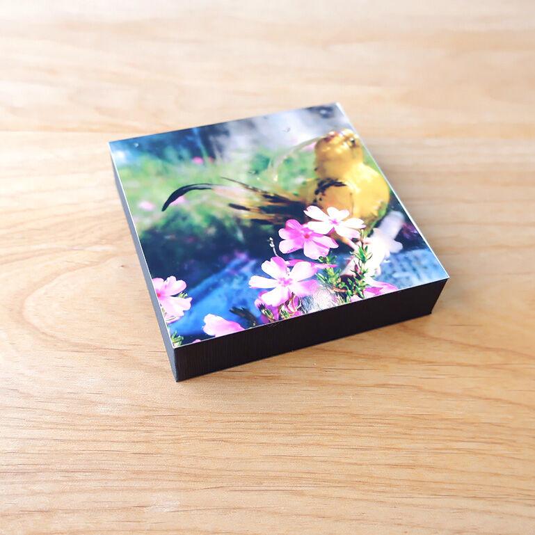 ShacollaBox(シャコラボックス) ましかくサイズ(89×89mm) ブラック